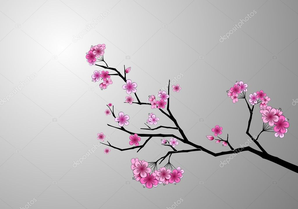 Japanese cherry blossom — Stock Vector #3094784