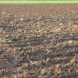 Plowed field — Stock Photo #2960047