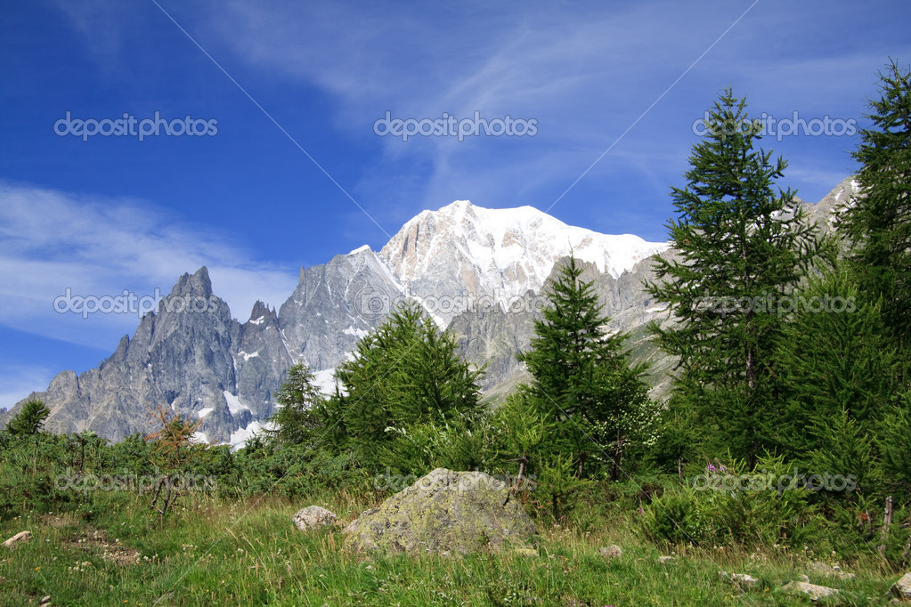 Mont Blanc photographed from the path to the Bertone refuge in Val Ferret — Stock Photo #3561670