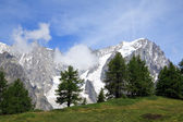 Grandes Jorasses (Mont Blanc) — Stock Photo