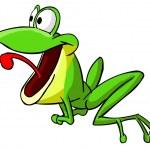 Frog 2 — Stock Photo