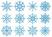 Set of 12 snowflakes — Stock Vector