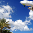 Plane at exotic destination - Stockfoto