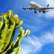 Royalty-Free Stock Photo: Plane and exotic destination