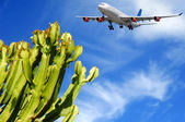Plane and exotic destination — Stock Photo