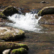Mountain Stream — Stock Photo #3016642