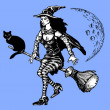 Witch on a broom — Stockfoto