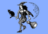 Witch on a broom — Stock Photo