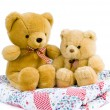 Stock Photo: Two teddy bears