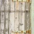 Stock Photo: Door with rusty hinges