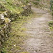 Stock Photo: Winding Lane