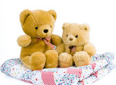 Two teddy bears — Stock Photo