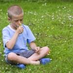 kleiner junge sitzt auf einer wiese, eine reihe von wilden blumen riechen — Stockfoto