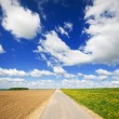 Agriculture landscape with road — Stock Photo