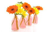 Little bouquets in glass vase — Stock Photo