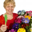 Stock Photo: Elderly woman is gardening
