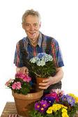 Jardineiro — Foto Stock
