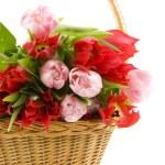 Basket with tulips — Stock Photo