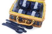 Piknik tabak-çanak — Stok fotoğraf
