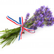 Lavender from Provence — Stock Photo #2879364