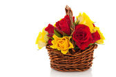Basket red and yellow roses — Stock Photo