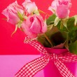 Pink roses on red — Stock Photo