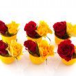 Red and yellow roses in egg cups — Stockfoto