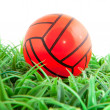 Orange ball in the grass — Stock Photo