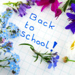 Back to school — Stock Photo #2930799