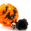 Halloween lantern and black rose — Stock Photo #2938417