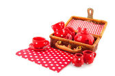 Drinking coffee or tea while picnic — Stock Photo