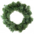 Green christmas wreath — Stock Photo #2940649