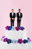 Homo wedding cake — Stock Photo