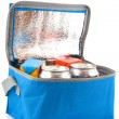 Coolbox with beverages — Stock Photo #3019152