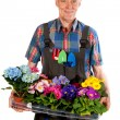 Gardener with flowers — Stock Photo