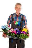 Gardener with flowers — Stock Photo