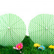 Parasols in the grass — Stock Photo