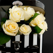 White roses on black — Stock Photo