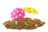 Summer parasols at the beach — Stock Photo