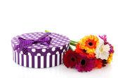 花と紫の現在 — ストック写真