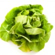 Fresh green lettuce — Stock Photo #3192818