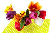 Tulipes colorées — Photo