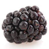 Bramble berry — Stock Photo