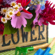 Stock Photo: Garden flower bouquet