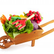 Wheelbarrow vegetables — Stock Photo
