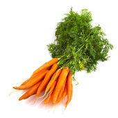 Bunch carrots — Stock Photo