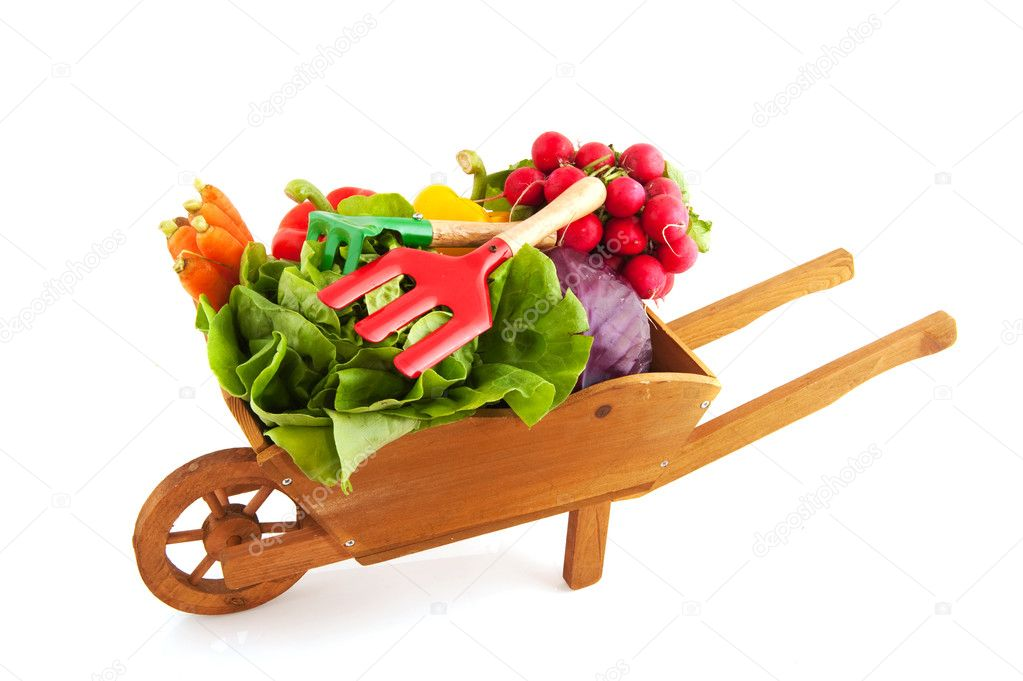 Wooden wheelbarrow with a diversity of fresh vegetables — Stock Photo #3697695