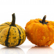 Squashes and pumpkins — Stok fotoğraf