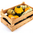 Squashes and pumpkins in wooden crate — ストック写真
