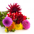 Bouquet Dahlias — Stock Photo #3725031